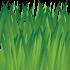 grass sprite phaser game tutorial