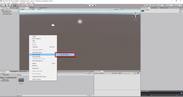 Unity with Import Package option selected