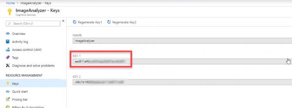 ImageAnalyzer keys in Azure for API use in Unity