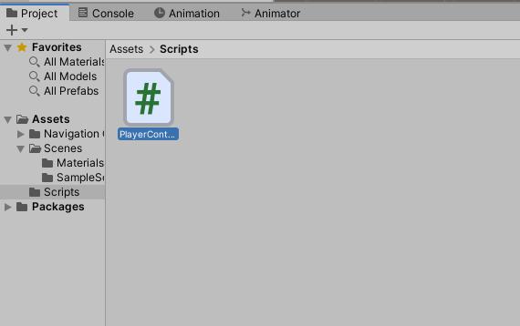 A newly created script in a newly created folder