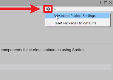 Advanced Project Settings selected from gear icon